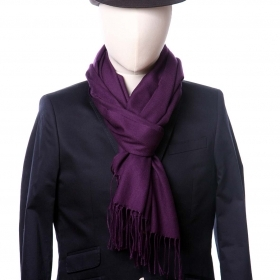 scarf Aster